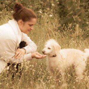 Tellington TTouch für Hunde