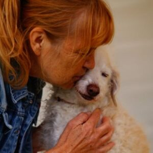 Hund hat Angst vor Knallern