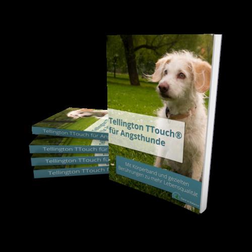 Der TTouch Guide für Angsthunde